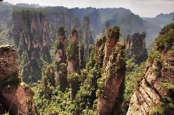 Excursión privada de un día: Parque Forestal Nacional Zhangjiajie, Montaña Tianzi y Parque Helong