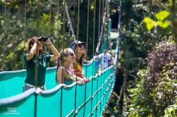 Paseo por el Parque Sky Adventure - Monteverde