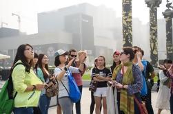 3-Horas Pequeño Grupo Xi'an Ciudad Tarde Tour a pie de Chang'an Scholar Road