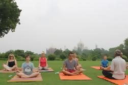 1 hora de sesión de yoga frente al Taj Mahal, incluida la transferencia de hoteles