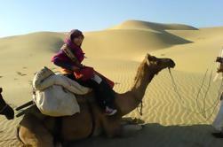 Safari de camellos de grupo pequeño de día completo en Jaisalmer