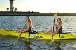 Alquiler de Kayak en South Padre Island