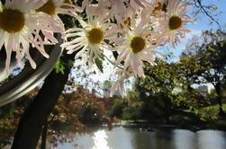 Central Park Hidden Secrets Tour