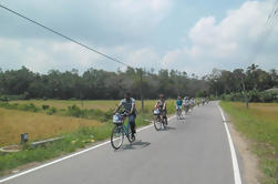 Half-Day Lagoon en Village Cycling Tour in Galle