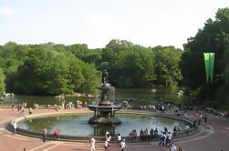 Excursión a pie de Central Park