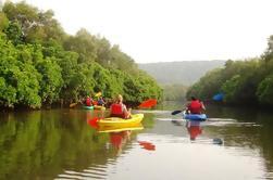 Goa Kayak en el río Spike
