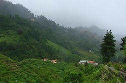 Excursión de un día a Daman Village desde Kathmandu