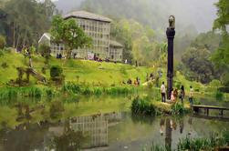 Excursão Privada do Jardim Botânico Godawari Incluindo Almoço