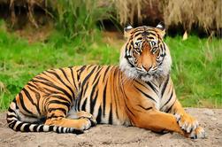 Excursión de un día al Zoológico Central de Jawalakhel