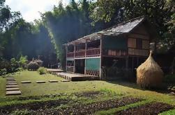 Experiencia de bambú de día completo en Luang Prabang