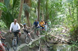 Cores da excursão da bicicleta de Banguecoque