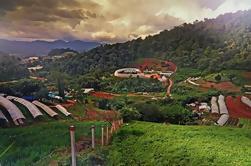 HMong Nong Hoi Pueblo privado y jardín botánico en Chiang Mai
