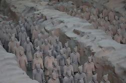 Xi'an Tour Privado: Guerreros de Terracota, Ayuntamiento y Gigante Pagoda del Ganso Salvaje
