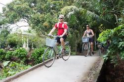 Excursión de un día al río Mekong Ho Chi Minh City