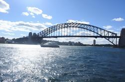 Vistas do porto de Sydney Excursão Running da manhã ou da tarde