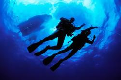 PADI Open Water Diver Certification in Cabo