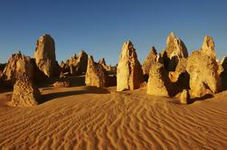 Excursión de un día a Pinnacles desde Perth Incluyendo el Parque Nacional Yanchep
