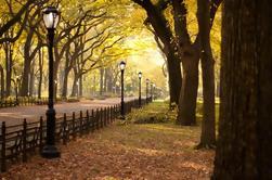 Tour de la puesta del sol de Central Park