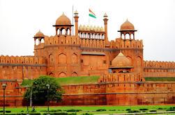 Excursión guiada privada de día completo de la ciudad vieja de Delhi
