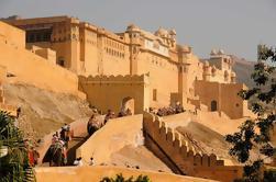 Excursão privada de Triângulo Dourado de 3 Dias: Deli, Agra e Jaipur