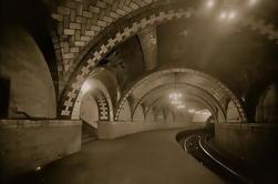 Subterráneo subterráneo privado guiado del metro de Nueva York