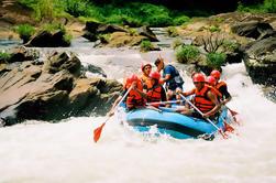 3-Notte Sri Lanka Tour Compreso Kandy e Kithulgala