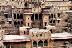 Excursión de un día a Jaipur Abhaneri