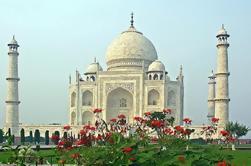Excursión privada Taj Mahal y Agra desde Jaipur