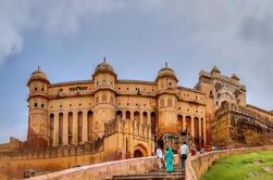 Excursión privada de 5 días de Delhi, Agra, Santuario de Aves de Bharatpur y Jaipur