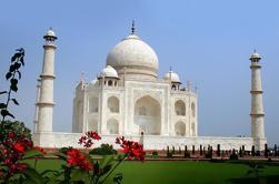 5 noches Delhi, Jaipur, Ranthambore Tigres y Taj Mahal Tour privado