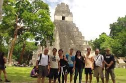 Excursión de un día a Tikal con Canopy opcional de Zipline desde la ciudad de Guatemala o Antigua