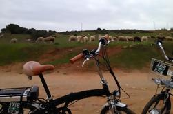 Environmental Park Bike Tour von Vilamoura