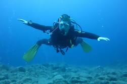 Descubre el Buceo, Playa de las Américas