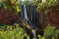 Excursion d'une journée à Ouzoud Waterfalls à partir de Marrakech