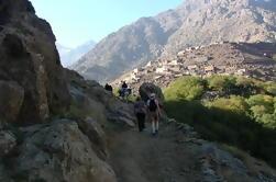 Excursion d'une journée à Imlil et Atlas depuis Marrakech