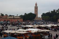 Promenade guidée d'une demi-journée à Marrakech
