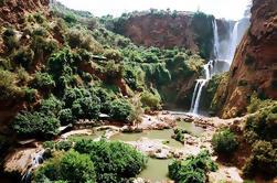Excursion d'une journée guidée privée à Ouzoud Waterfalls from Marrakech