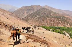 Tour d'équitation d'une demi-journée dans les montagnes de l'Atlas depuis Marrakech