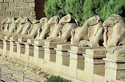 Excursión de 7 noches a El Cairo, Giza y Luxor