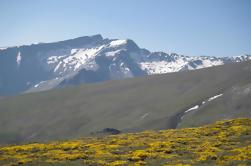 4x4 Excursión Safari de Sierra Nevada en Granada