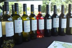 Tour Privado: Tour de la Bahía de las Islas con Cata de Vino