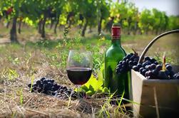 Visite privée du vin à Kakheti de Tbilissi