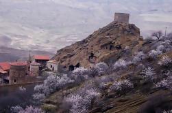 Excursion privée d'une journée au complexe David Gareja de Tbilissi