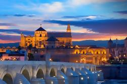 Córdoba City Tour desde Sevilla