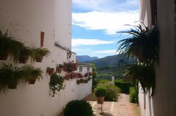 Private White Villages Tour de um dia guiado de Sevilha