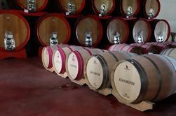 Tour en grupo pequeño: Tour de vino en Toscana Siena y San Gimignano - Tour de día completo desde Roma - Degustación y almuerzo incluidos