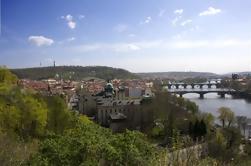 Excursão de passeio de cidade de dia inteiro de Praga e torre de Petrin