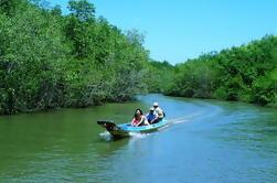 Can Mangrove Gio e Monkey Island Adventure Tour de Ho Chi Minh City
