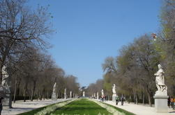 Private Guided Halve dag City Tour in Madrid met openbaar vervoer