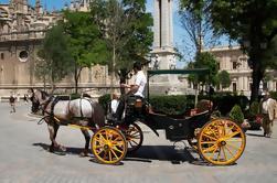 Cavallo privato in carrozza e Tour a piedi di Siviglia